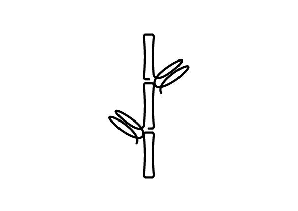 widget image
